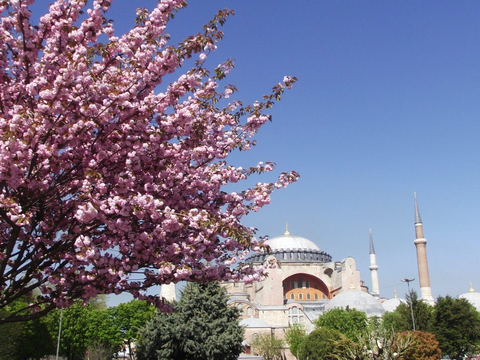 Lulu no Pais das Maravilhas Istambul