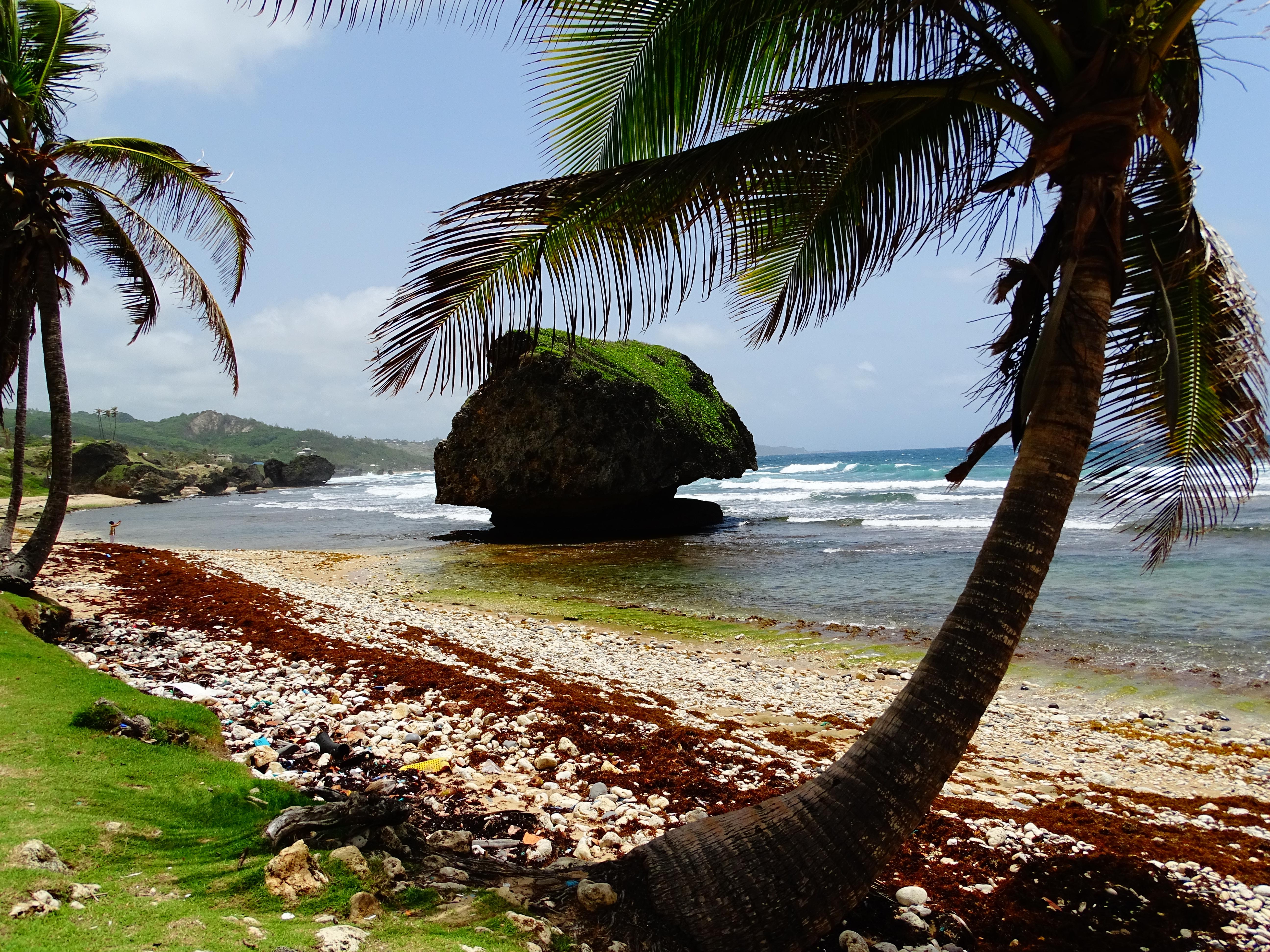 Barbados 36